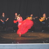 ESPECT�CULO FLAMENCO EN MADRID. ESPECT�CULO DE CANTE Y BAILE EN MADRID. FLAMENCO EN MADRID.