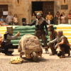 ESPECTCULO MEDIEVAL EN MADRID. TEATRO DE CALLE ANIMACIN FIESTAS DE EMPRESA Y PATRONALES.
