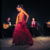 SHOW FLAMENCO EN BARCELONA. BAILE FLAMENCO Y FUSION DE DANZAS Y MUSICA EN CATALUA.