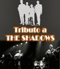 TRIBUTO A THE SHADOWS: TEMAS MITICOS DE LA DECADA DE LOS 60.